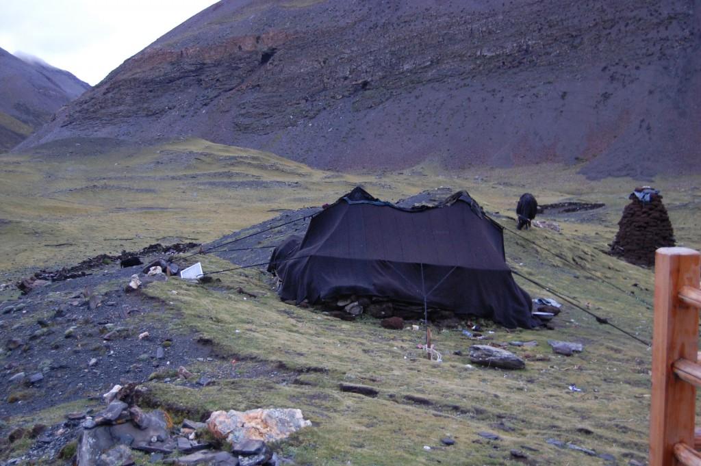 Yak wool yurt at 5000 meter summit